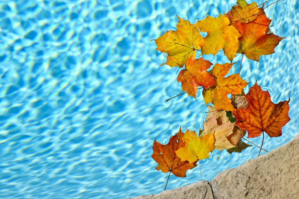 Central Florida: Why Fall's the Time to Build Your Pool