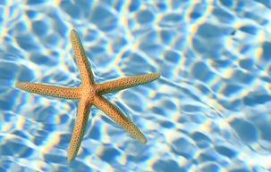 Top 4 Benefits of Salt Water Pools
