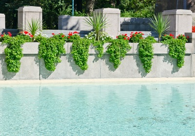 Your Guide to In-Pool Planters