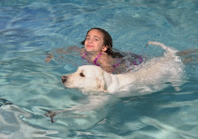 Your Ormond Swimming Pool: Safety Tips For Swimming With Your Dog