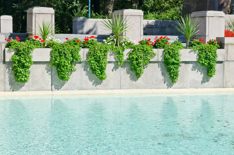 Your Guide To In Pool Planters